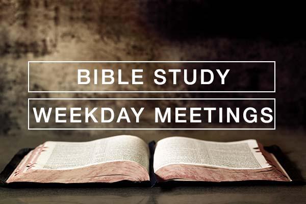 Weekday Meetings